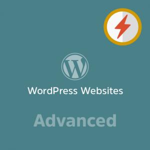 Advanced WordPress Website