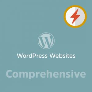 Comprehensive WordPress Website