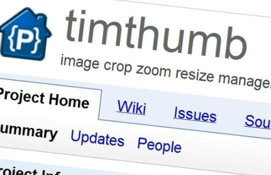 Interview with Pro Theme Design on the Timthumb security issue