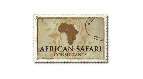 african safari consultants