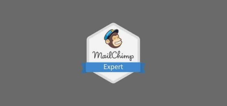 LightSpeed Join the MailChimp Experts Directory