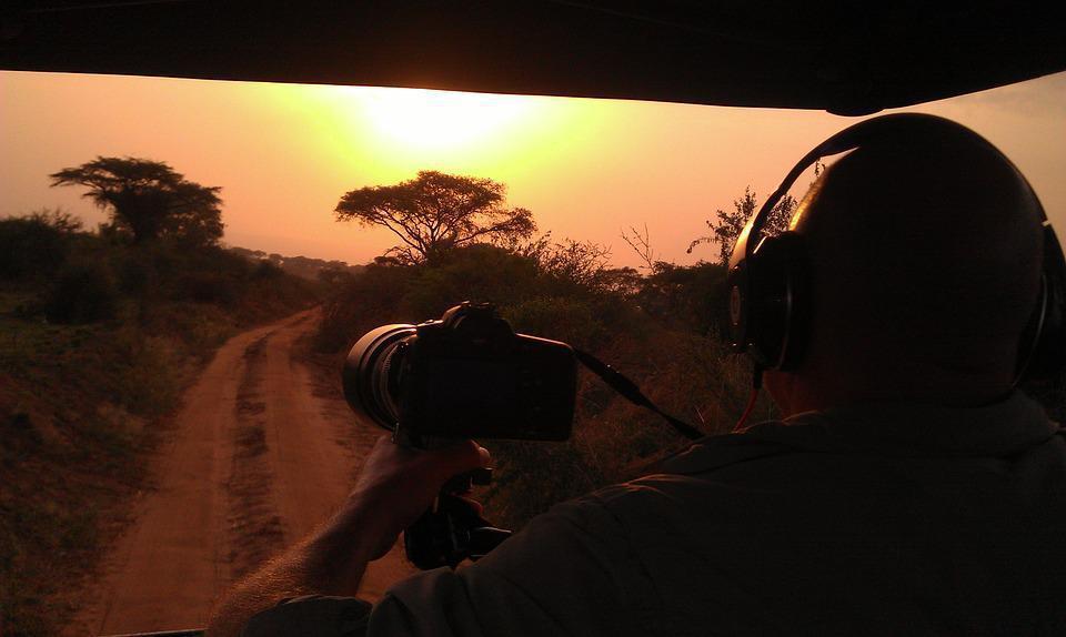 safari-192649_960_720
