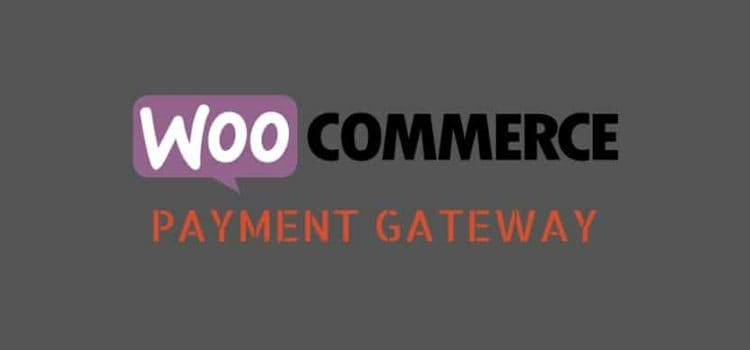 PayU: WooCommerce Payment Gateway for Small, Medium and Large Companies